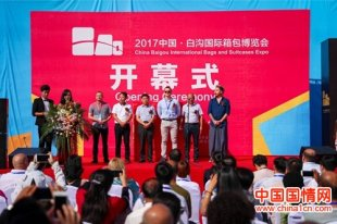 2017中国白沟国际箱包