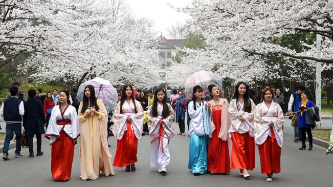 3月17日,在南京林业大学樱花大道,几名身着传统服饰的女生一边行走图片