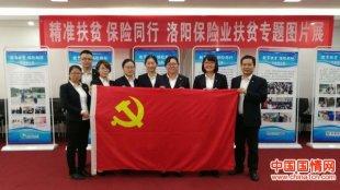 新华保险洛阳中支组织