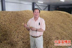 武华文:能量有机肥铺