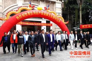 2020重庆刘氏产业发展