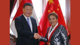 习近平会见秘鲁国会主席萨