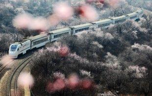 北京:游客乘市